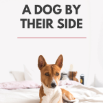 Women Sleep Better With Dog By Their Side