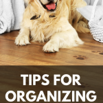 Tips for Organizing Your Dog Supplies
