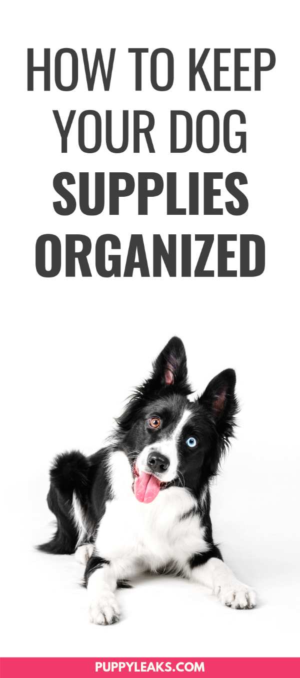 Tips For Organizing Your Dog Supplies Puppy Leaks
