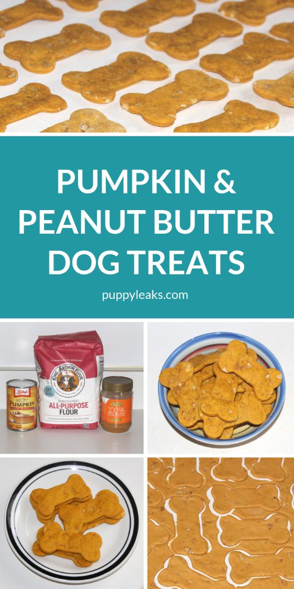Homemade Pumpkin & Peanut Butter Dog Treats
