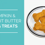 Pumpkin & Peanut Butter Dog Treats