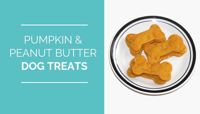 Pumpkin & Peanut Butter Dog Treats