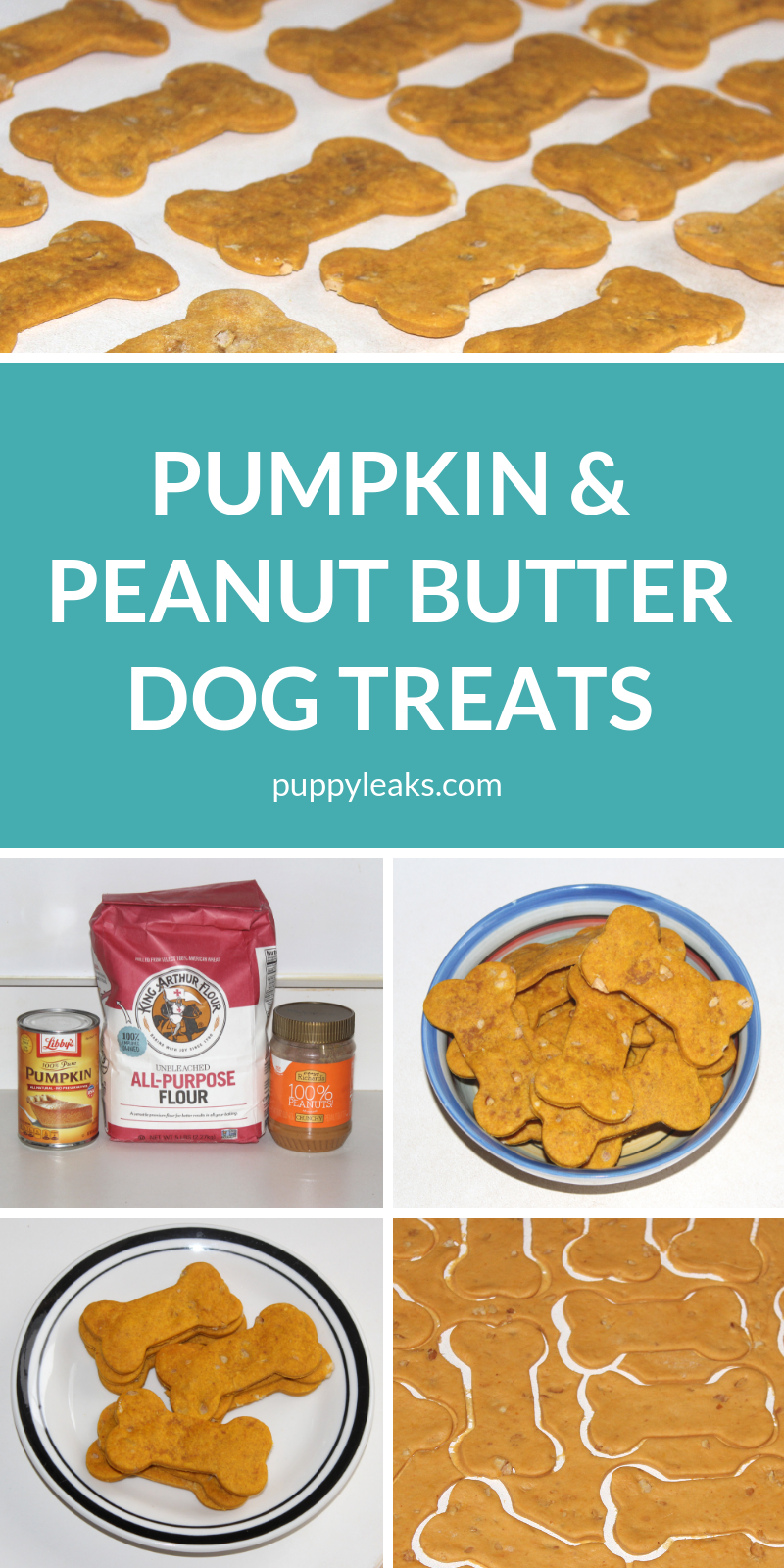 Easy Pumpkin & Peanut Butter Dog Treat Recipe