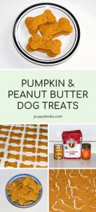 Peanut butter & pumpkin dog treats