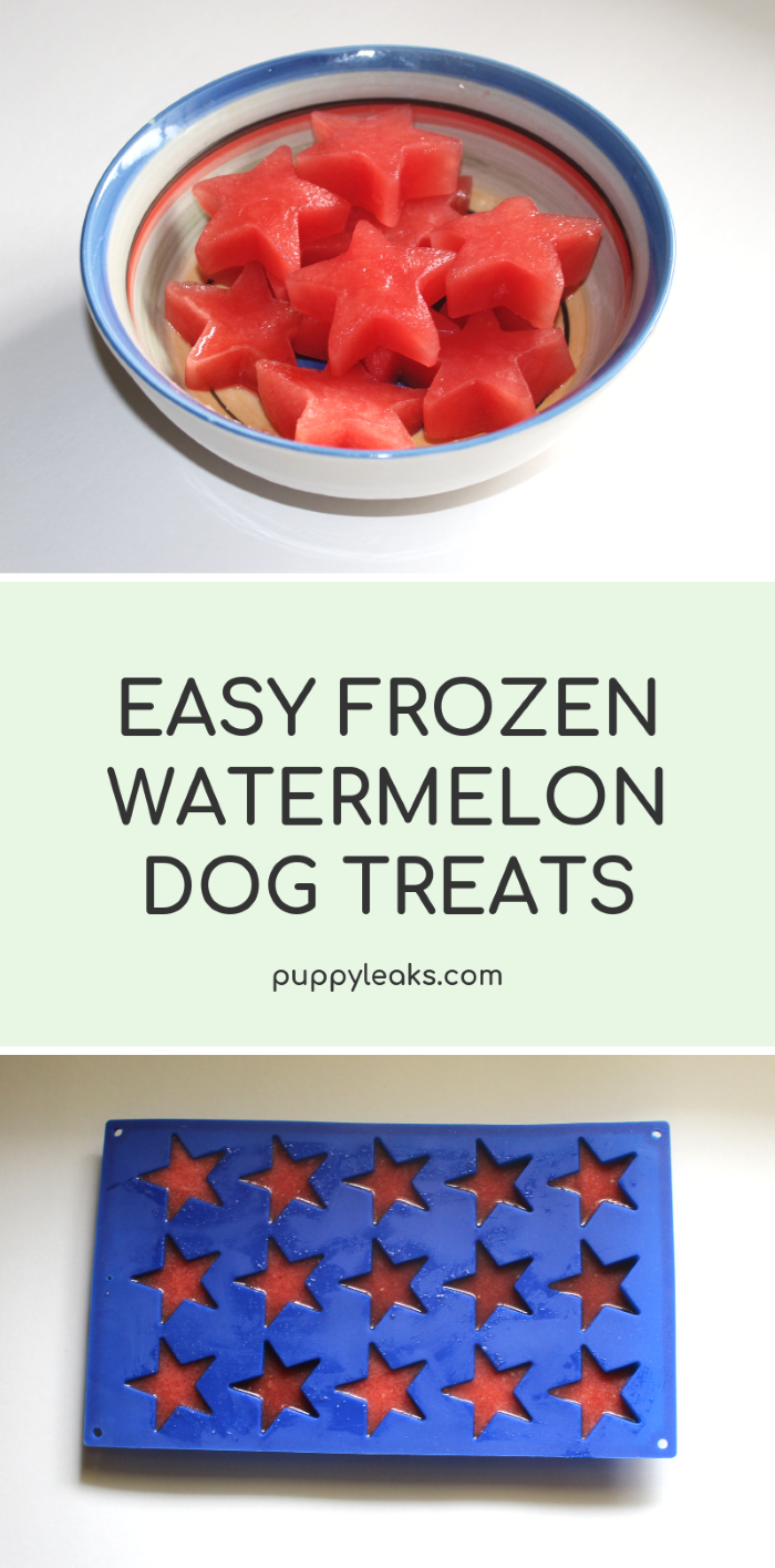 Super Easy Frozen Watermelon Dog Treats